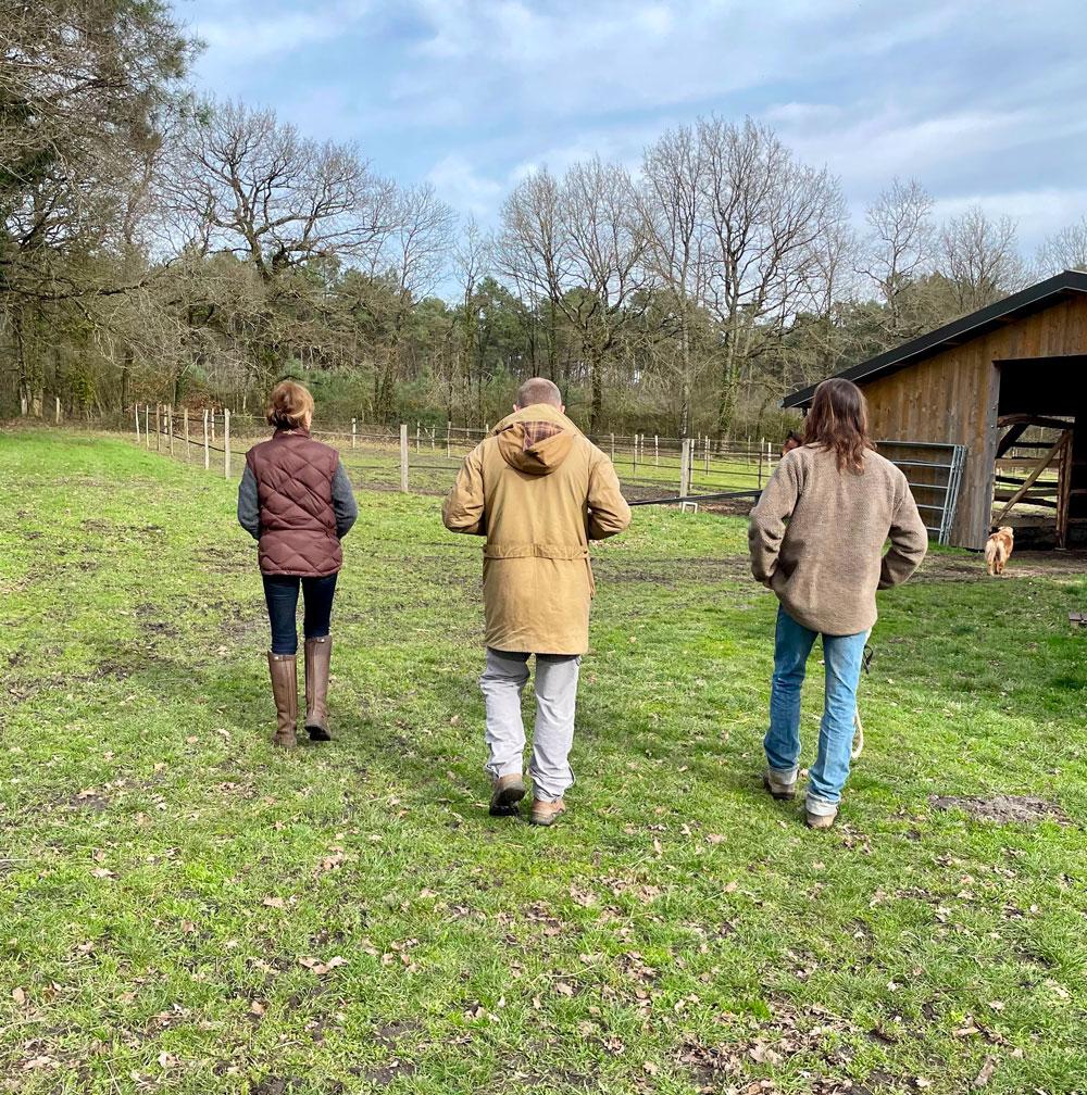 marche vers enclos chevaux
